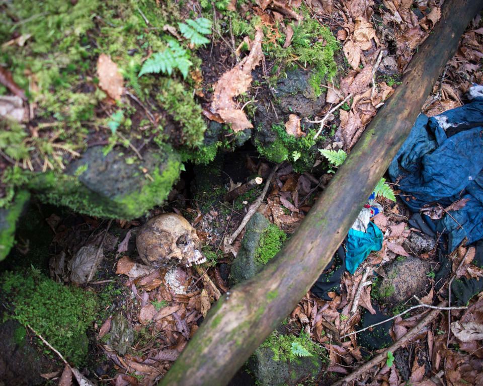 Τολμάς να μπεις; Το δάσος που όποιος πατάει το πόδι του αυτοκτονεί (Pics)