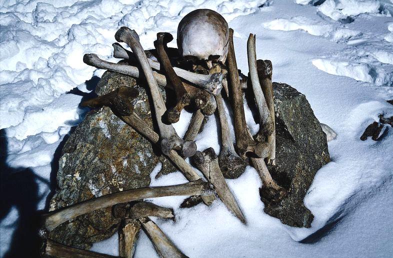 limni-ton-skeleton-7-500