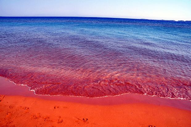 Ο κακός χαμός: Το μυστικό της παραλίας που βούλιαξε (και) φέτος από γυναίκες (Pics)