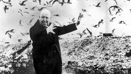 Η πιο τρομακτική ταινία όλων των εποχών είχε για πρωταγωνιστές... πουλιά