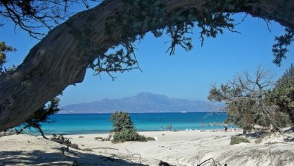 Χρυσή: Η ελληνική… Χαβάη που θα σε κάνει να τρίβεις τα μάτια σου!