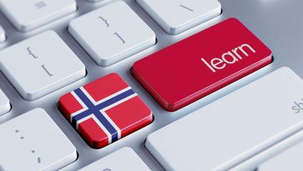 Νορβηγία: Ένας άλλος κόσμος, μια παιδεία-κοινωνική προσφορά