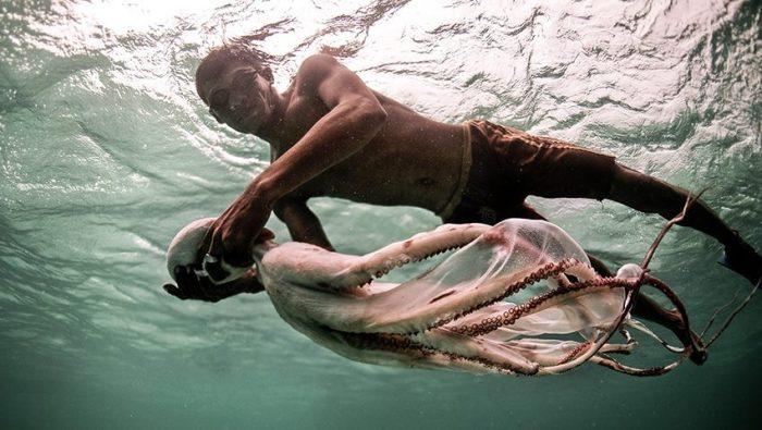 Μπατζάου: Οι γενετικά μεταλλαγμένοι «τσιγγάνοι της θάλασσας»