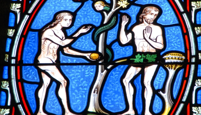 Η «εκδίκηση» του Θεού: Επιστήμονες καταρρίπτουν την Θεωρία της Εξέλιξης!