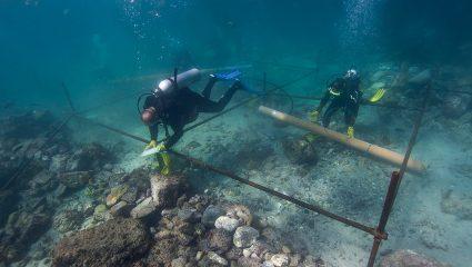 Κυνηγός ναυαγίων: Ο άνθρωπος που βρήκε το αεροσκάφος του Σάλα έχει λύσει τα πιο μεγάλα ναυτικά μυστήρια