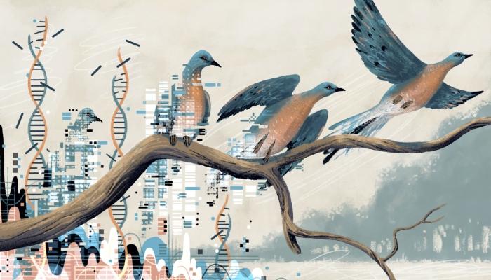 Νεκρανάσταση που διχάζει: Τα εξαφανισμένα είδη ζώων που οι επιστήμονες θέλουν να επαναφέρουν στη ζωή