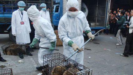 Δεν βάζουν μυαλό: Η εικόνα στις αγορές της Κίνας 4 μήνες μετά τη «γέννηση» του κορωνοϊού