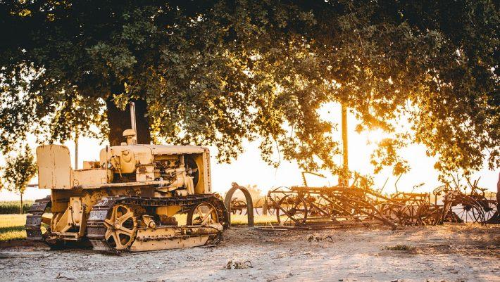 Ένα ξύλο έφερε το οικονομικό θαύμα: Το ελληνικό χωριό που έχει 0% ανεργία βρήκε χρυσάφι στα δέντρα του