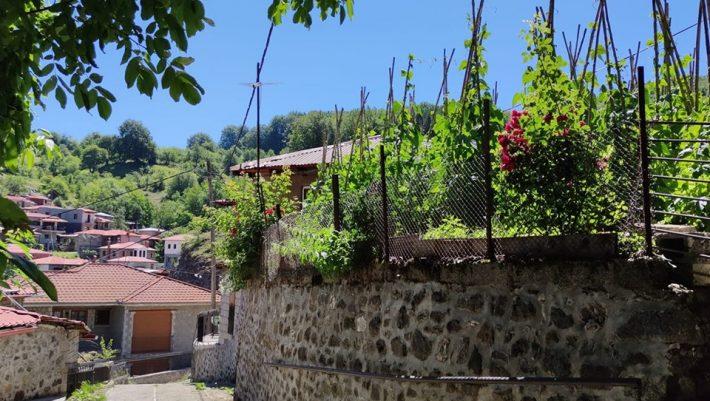 Ένα θαύμα που το λένε, «Μηλιά»: Το ελληνικό χωριό που έχει 0% ανεργία βρήκε «χρυσάφι» στον τόπο του (Pics)