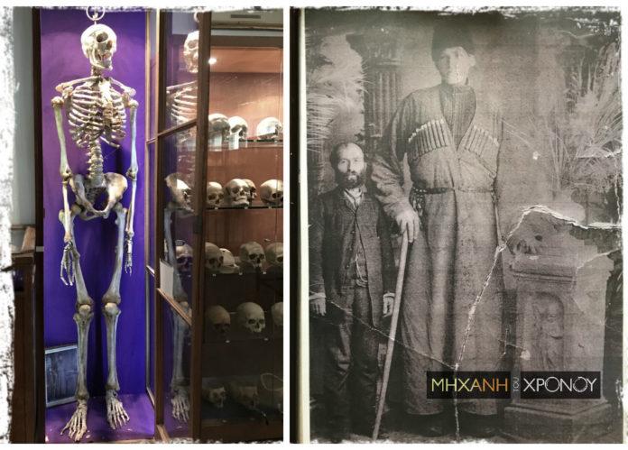 Σχεδόν 2.40: Ο γίγαντας της Πτολεμαΐδας που ο σκελετός του παραδόθηκε στο εργαστήριο του Πανεπιστημίου Αθηνών