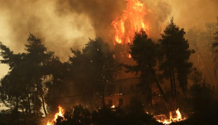 Γερμανοί πυροσβέστες στην Ελλάδα: Η αυτάρκης ομάδα κρούσης που σβήνει τις φωτιές με τον δικό της τρόπο