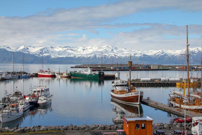 91% πλήρως εμβολιασμένοι κι όμως…: Τα νούμερα της Ισλανδίας διαλύουν οριστικά το μύθο των εμβολίων